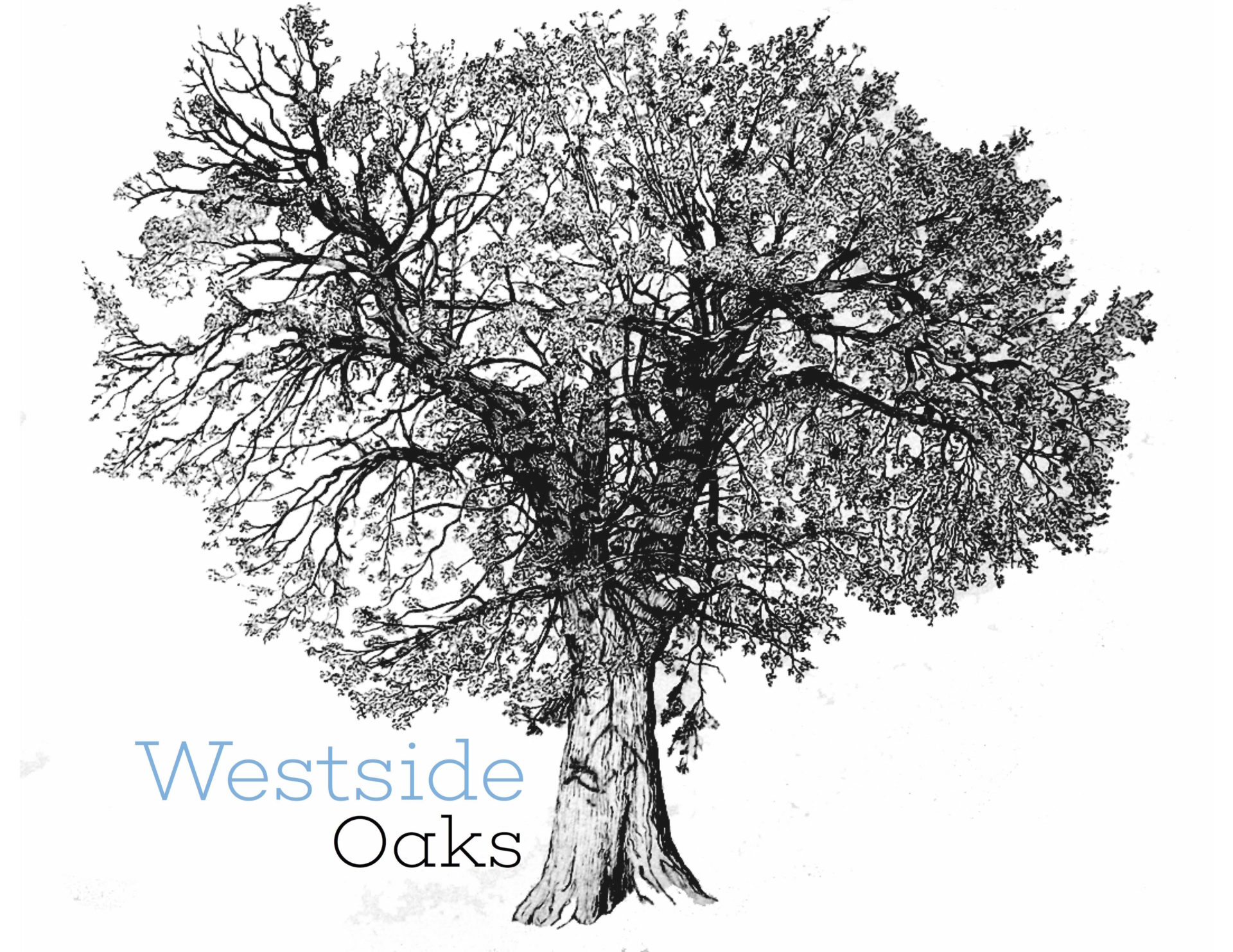 Westside Oaks